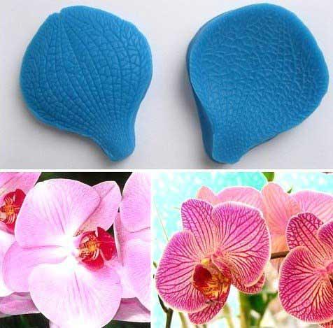 Вайнер орхидея двухсторониий