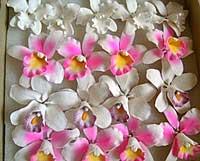 Украшения для тортов цветы